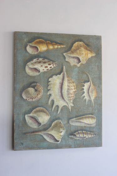Lovely greygreen painting of shells