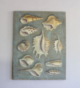 Lovely greygreen painting of shells - picture 2